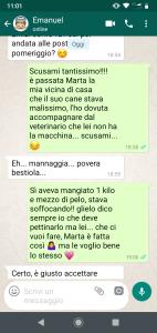 Albicocche agostiniane_3